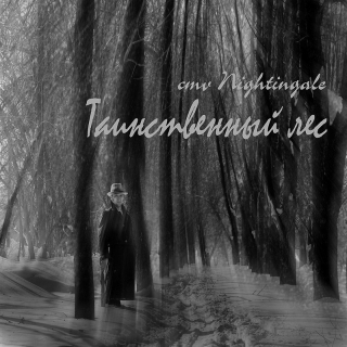 UMPAKO-85: cmv Nightingale / Tainstvennyj les (New Age)