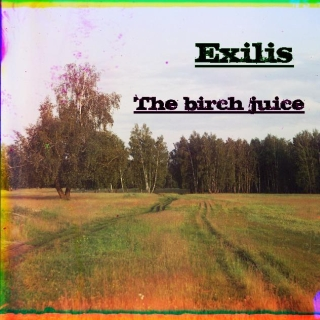 UMPAKO-96: Exilis / The birch juice (Experimental, Ambient, Trip-Hop)