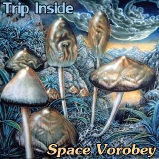 space_vorobey_trip-inside